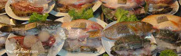 sea food selection