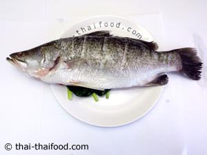 ปลากระพงขอดเกล็ดออก นำข่าตะไคร้ใบมะกรูดยัดในท้องปลา