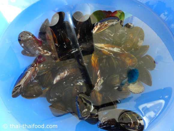 ทำความสะอาดหอยแมลงภู่