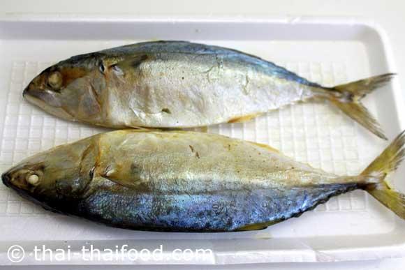 ปลาทูนึ่ง