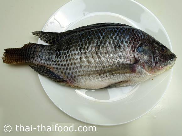 เตรียมปลาสด