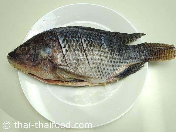 ขอดเกล็ดปลาบั้งตัวปลาล้างน้ำให้สะอาด