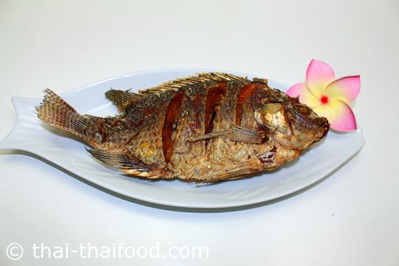ปลาทอด พร้อมจัดเสิร์ฟ