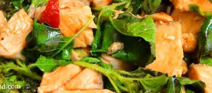 ผัดกะเพราปลาแซลมอน