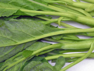 คะน้า (Chinese Kale) เป็นพืชผักใบเขียว