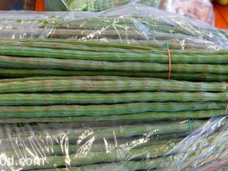 มะรุม-moringa เป็นพืชผักสมุนไพรพื้นบ้าน