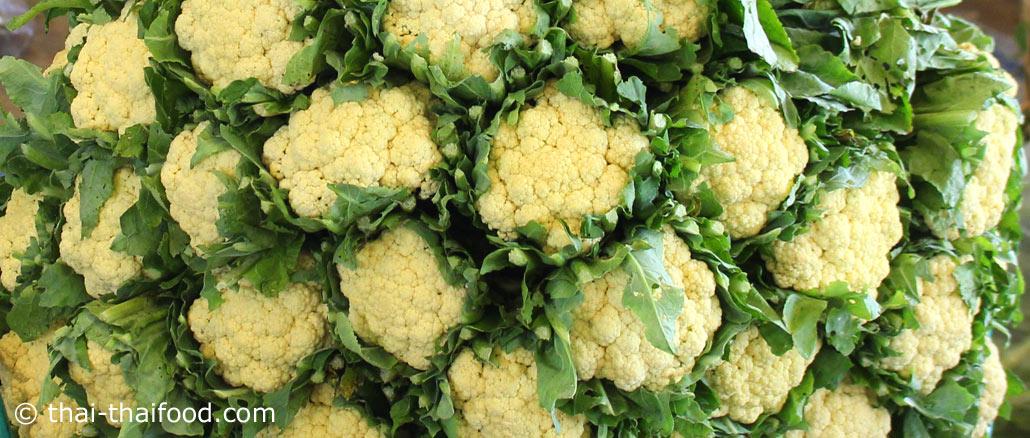 กะหล่ำดอก-cauliflower พืชผักสมุนไพร เป็นพืชล้มลุก อยู่ในตระกูลเดียวกับกะหล่ำปลี ใช้ดอกรับประทาน