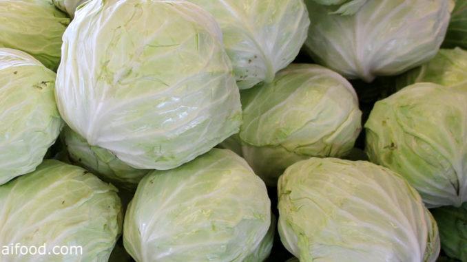 กะหล่ำปลี-cabbage เป็นพืชผักสมุนไพร เป็นพืชล้มลุก ใช้ใบรับประทาน
