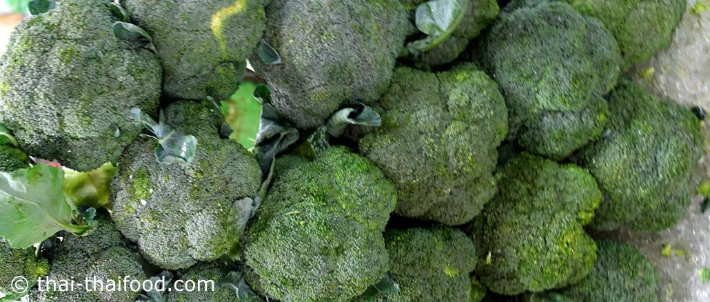 บร็อคโคลี่-broccoli เป็นพืชผักสมุนไพร ทรงพุ่ม อยู่ในตระกูลเดียวกับกะหล่ำปลี