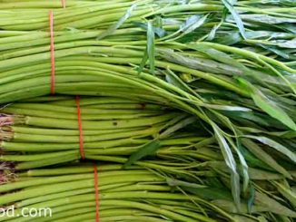 ผักบุ้ง หรือเรียกอีกอย่างว่า ผักทอดยอด เป็นพืชผักสมุนไพร
