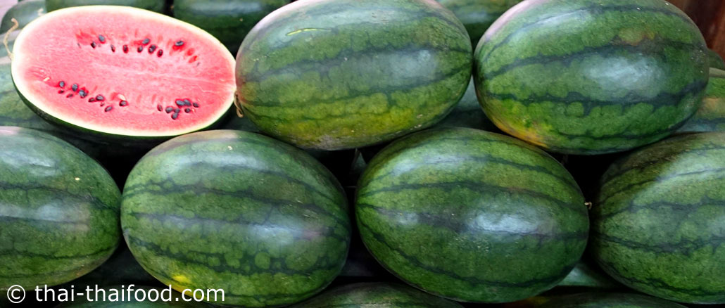 แตงโม-Watermelon เป็นพืชล้มลุก มีอายุสั้น ลำต้นเป็นเถาเลื้อย