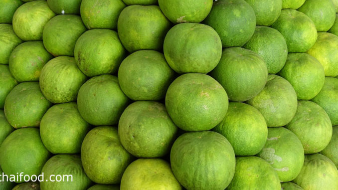 ส้มโอ (Pomelo) เป็นผลไม้ยืนต้นขนาดกลาง ลำต้นมีกิ่งมีหนามยาวเล็กน้อยตระกูลส้ม ผลมีลักษณะกลมๆ คล้ายผลส้ม แต่ขนาดใหญ่กว่า มีรสชาติเปรี้ยวอมหวาน