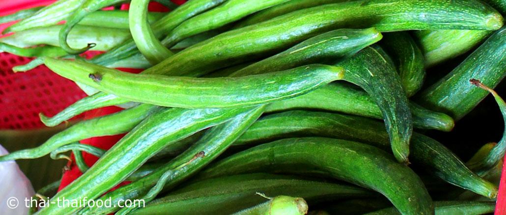บวบงู (Snake Gourd) เป็นบวบชนิดหนึ่ง เป็นไม้เลื้อยมีอายุสั้น ผลกลมเรียวยาวโค้งยาวบิดงอ ปลายผลแหลม เปลือกบางผิวเรียบ มีสีเขียวมีลายเส้นสีขาวตามยาว