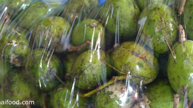 มะกอกฝรั่ง (Ambarella) ผลทรงกลมรูปไข่ ผิวเปลือกบาง มียางเล็กๆเกาะทั่วผล ผลแก่มีสีเขียวอมเหลือง เนื้อแน่นกรอบ มีรสชาติเปรี้ยวอมหวานมัน