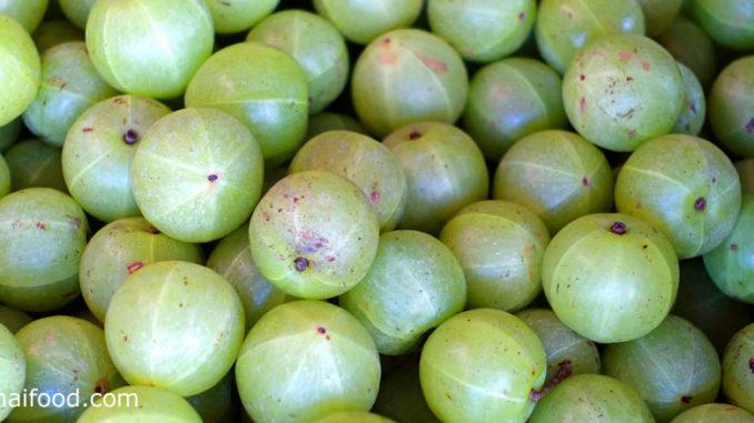 มะขามป้อม (Indian Gooseberry) ผลทรงกลม ผิวเปลือกบางเรียบเกลี้ยงเป็นมัน ผลมีสีเขียวอ่อนใส เนื้อนุ่มฉ่ำน้ำ มีรสชาติเปรี้ยวอมฝาด มีถิ่นกำเนิดในประเทศอินเดีย