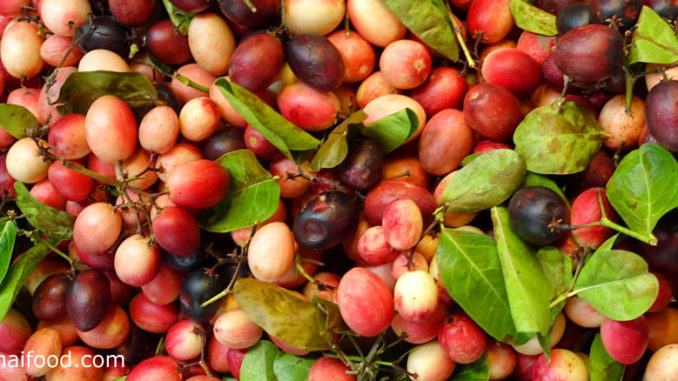 มะม่วงหาวมะนาวโห่ (Carunda) ผลทรงกลมรีเรียวเล็ก ผลแก่มีสีแดง มีรสชาติเปรี้ยวจัด มีถิ่นกำเนิดในประเทศอินเดีย
