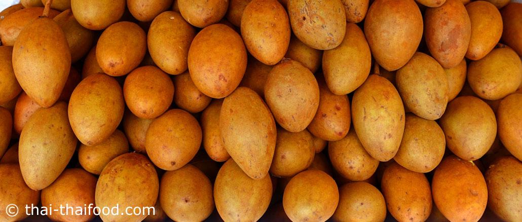 ละมุด (Sapodilla) ผลรูปไข่ ผิวเปลือกบาง มีสีน้ำตาล มีไคลปกคลุมทั่วผล เนื้อนุ่มชุ่มน้ำรสชาติหวานฉ่ำ มีกลิ่นหอม