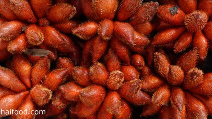 สละ (Snake Fruit) เป็นผลไม้ชนิดเดียวกันกับระกำ เป็นพืชตระกูลปาล์ม