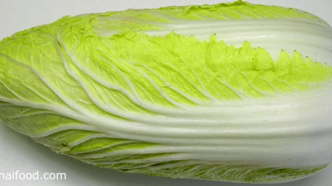 ผักกาดขาว (Chinese Cabbage) ลำต้นตั้งตรงกลมๆ มีก้านใบหนาและยาวอวบน้ำ ออกเรียงสลับโดยรอบๆปกคลุมที่ลำต้น ห่อปลีหรือไม่ห่อปลีตามสายพันธุ์ มีสีเขียวอ่อน รสชาติหวานกรอบ