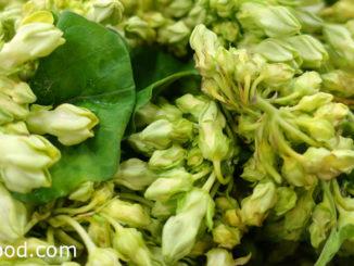 ผักขจร (Cowslip Creeper) หรือเรียกว่าผักสลิด เป็นไม้เถาเลื้อยยื่นต้น ดอกออกเป็นช่อ มีสีเหลืองอมเขียว มีรสชาติหวานอมขมนิดๆ