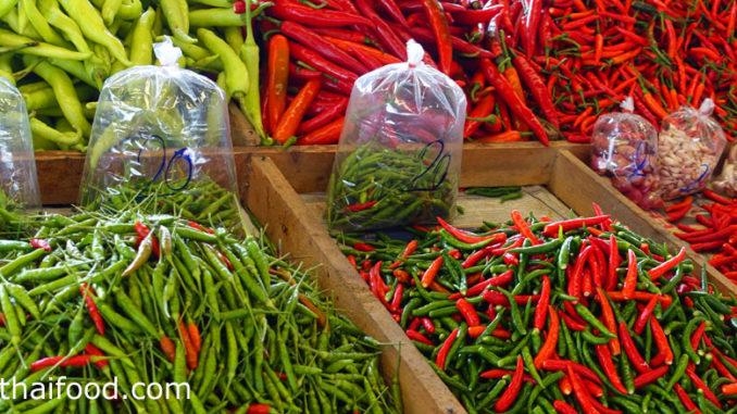 พริก (Prik) ผลมีทรงรี ทรงกลมรี ปลายผลเรียว มีขนาดเล็ก มีขนาดใหญ่ ตามสายพันธุ์ ผลมีสีเขียวอ่อน สีแดง สีส้ม หรือสีเหลือง มีรสชาติหวานกรอบ เผ็ดน้อยหรือเผ็ดมาก ตามสายพันธุ์
