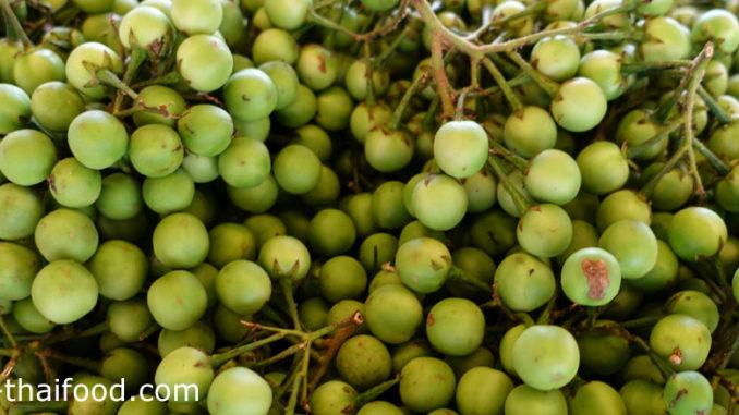 มะเขือพวง (Pea Eggplant) เป็นพืชผักสมุนไพร ผลอยู่เป็นพวง ผลมีทรงกลมเล็กๆ ผิวเปลือกหนาเรียบเป็นมัน ผลมีสีเขียว เนื้อแน่นกรอบฉ่ำน้ำ มีรสชาติขื่นขมอ่อนๆ
