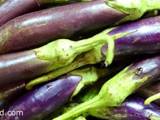 มะเขือยาว (Long Skinny Eggplant) เป็นมะเขือชนิดหนึ่ง เป็นพืชผักสมุนไพร เป็นไม้ทรงพุ่มขนาดเล็ก ลำต้นมีขนอ่อนๆปกคลุม ผลเป็นผลเดี่ยว มีลักษณะทรงกลมเรียวยาว ผิวบางเรียบเป็นมัน ผลมีสีเขียวอ่อน สีม่วง หรือสีขาว ตามสายพันธุ์ เนื้อนุ่มฉ่ำน้ำ มีรสชาติหวานขื่น