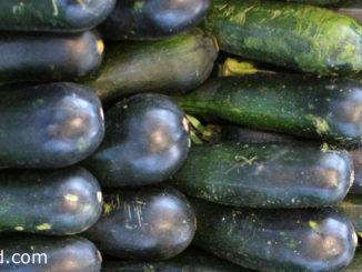 ซูกินี (Zucchini) ผลกลมเรียว ยาวรี ทรงกระบอก ผิวเปลือกบางมีขนอ่อนๆ มีขั้วใหญ่หนา ผลสีเขียวเข้ม มีลายจุดสีขาวเล็กๆ หรือสีเหลืองตามสายพันธุ์ เนื้อแน่นฉ่ำน้ำ รสชาติหวานกรอบ