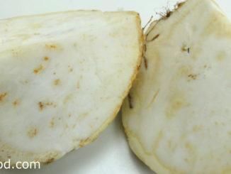 หัวขึ้นฉ่ายฝรั่ง (Celeriac) มีรากแก้วที่พองโต เรียกว่าหัวไว้เก็บสะสมอาหาร มีหัวขนาดใหญ่มีทรงกลม สีน้ำตาล มีรากฝอยเล็กๆออกรอบๆหัว เปลือกผิวหนาขรุขระ เนื้อแน่นฉ่ำน้ำรสชาติหวานกรอบ