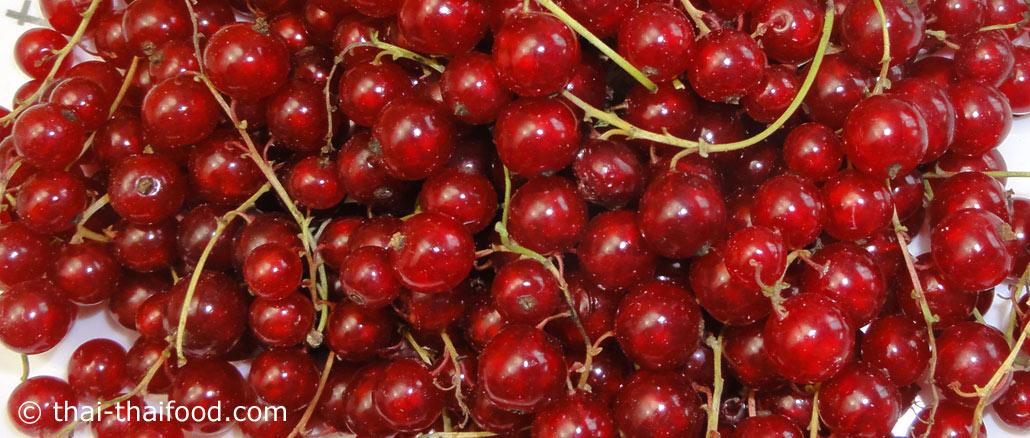 เรดเคอเรนท์ (Red Currant) ผลอยู่เป็นพวง มีทรงกลมเล็กๆปลายผลมีจุกเล็กๆ ผิวเปลือกเรียบลื่น ผลอ่อนสีเขียว ผลสุกจะมีสีแดง มีเนื้อสีแดง เนื้อนุ่มฉ่ำน้ำ มีรสชาติเปรี้ยวอมหวานหรือเปรี้ยว