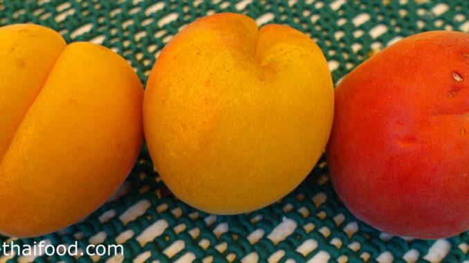 แอพริคอต (Apricot) ผลทรงกลม ผิวเปลือกมีขนนุ่มทั่วผล มีร่องกลางผลตามยาวชัดเจน มีก้านผลสั้น ผลดิบสีเขียว ผลสุกสีเหลือง สีส้ม เนื้อแน่นสีเหลือง รสชาติหวานอมเปรี้ยว มีกลิ่นหอม